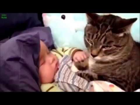 Bambini e animali, un rapporto davvero speciale